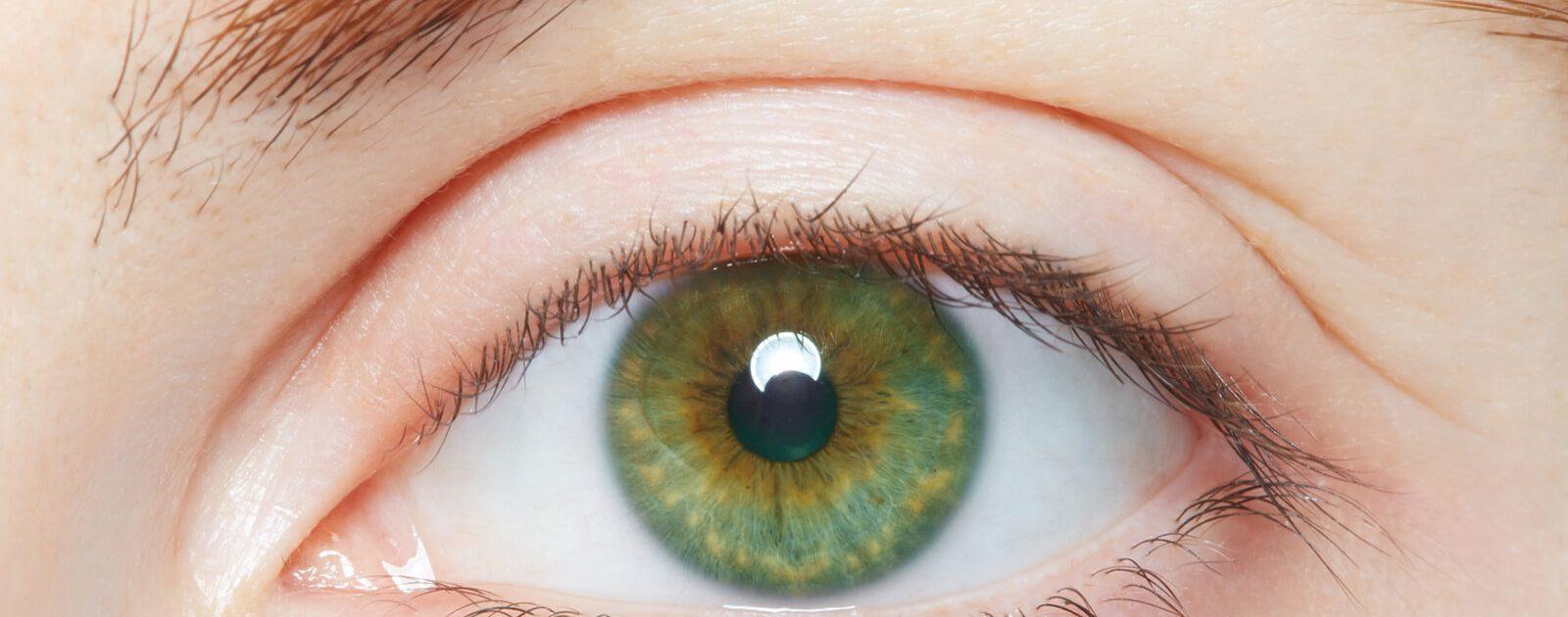 Grüne Iris: Die Regenbogenhaut (Iris) zeigt in der Regel nur eine Augenfarbe.