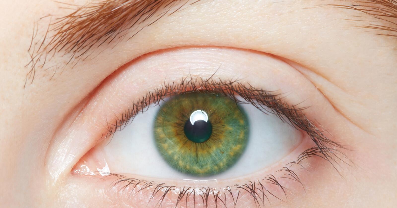 Wie Viel Prozent Der Weltbevölkerung Haben Blaue Augen