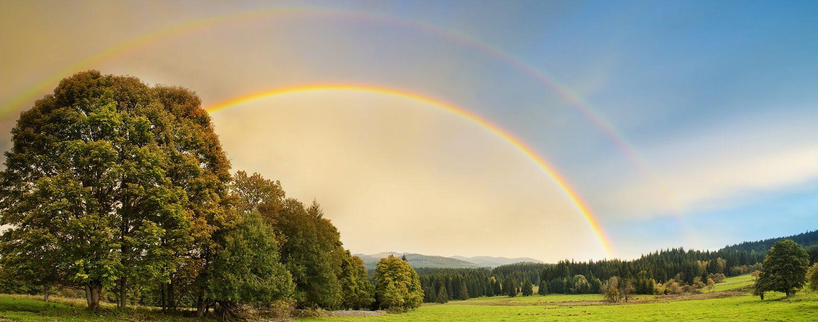 Menschen mit Farbenblindheit können nicht alle Farben eines Regenbogens sehen.