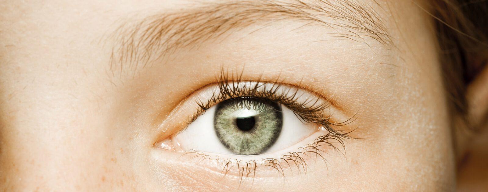 Iris und Pupille des menschlichen Auges