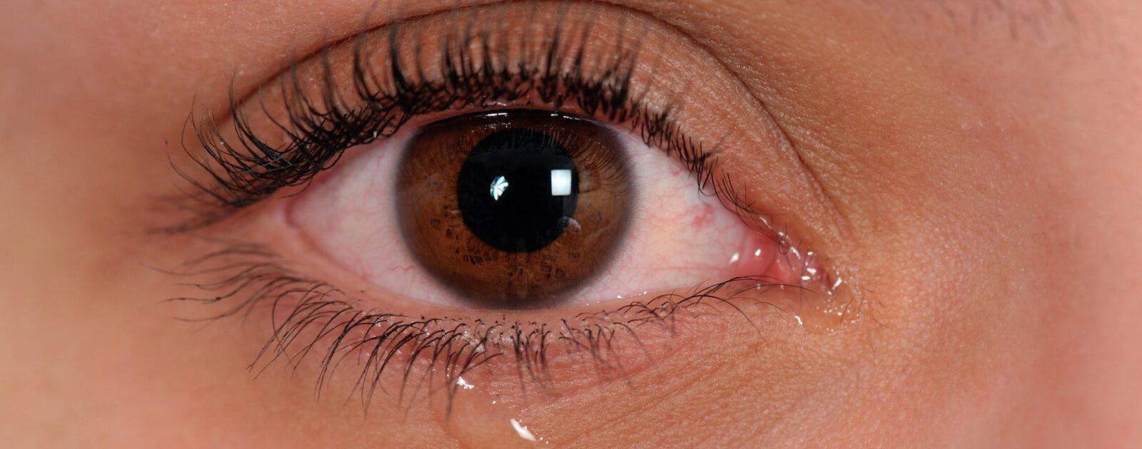 Tränen werden in Tränendrüsen produziert.
